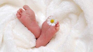 Tutela dei figli nati da PMA